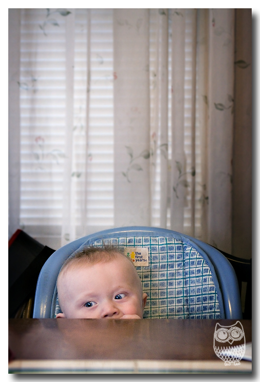not-so-high-chair