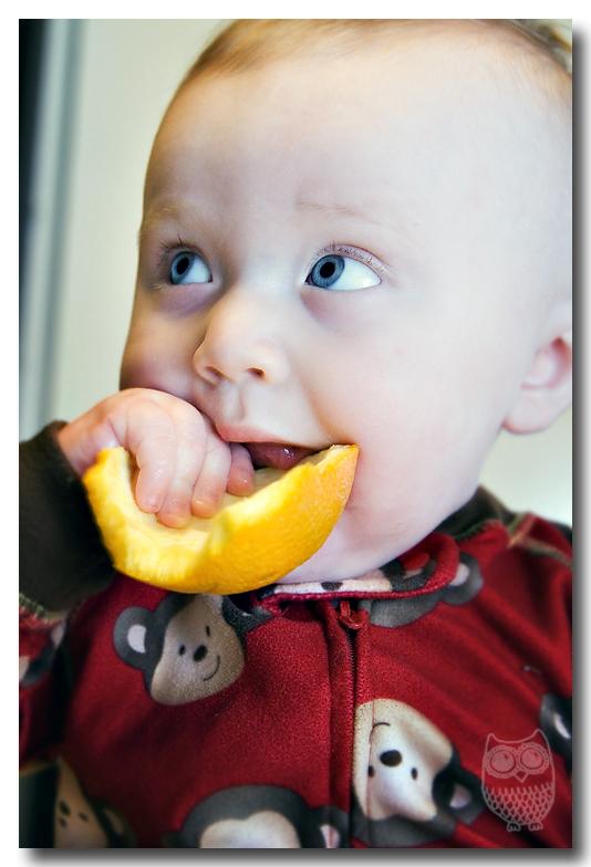 orange-blog2